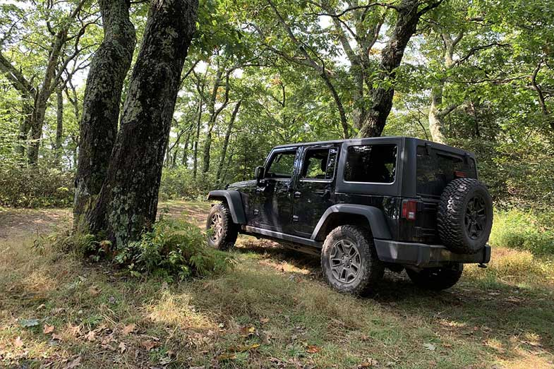 Black Off-Road Jeep in Forest