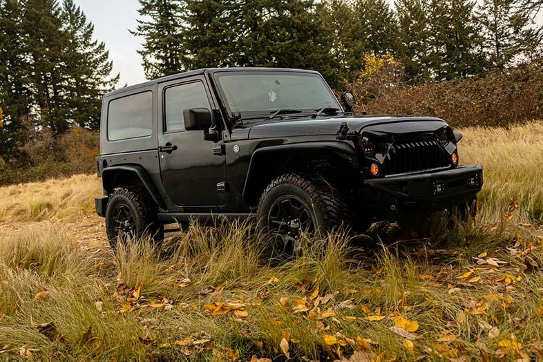 Black Jeep Wrangler on Grass