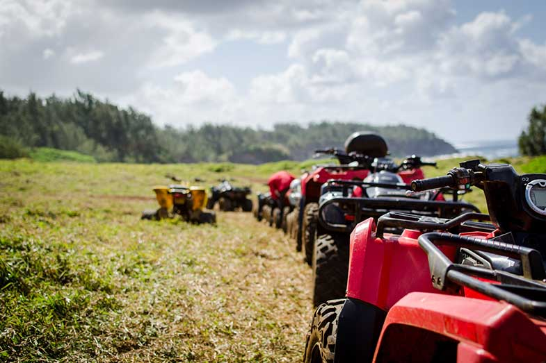 Red and Yellow ATVs on Grass