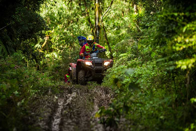 Red ATV Riding Off-Road in Dense Forest