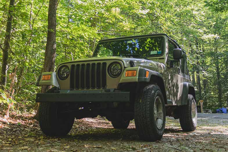 Green Jeep Wrangler in Forest
