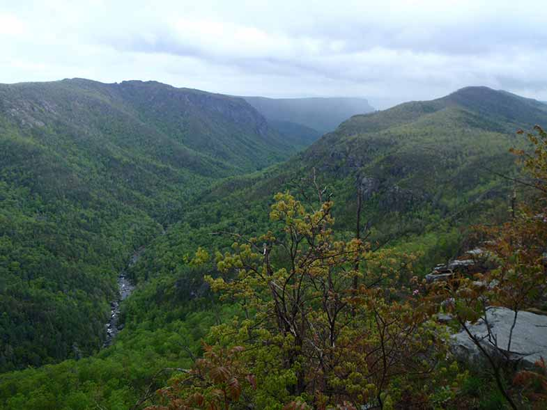 Linville Gorge Hills Landscape in North Carolina