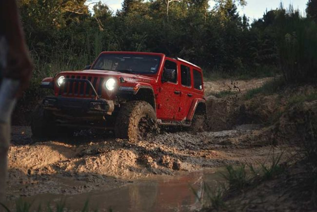 9 Best Off Road Trails in NC: North Carolina