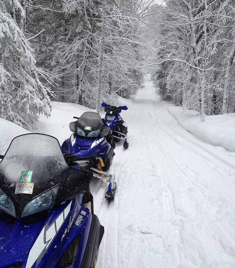 Blue Yamaha Snowmobiles on Trail in a Forest