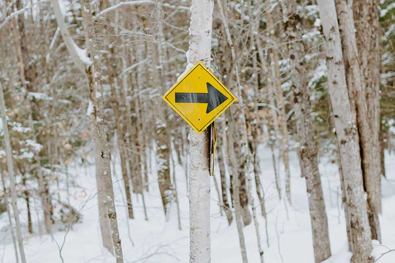 Snowmobile Trail Sign on Tree in Forest