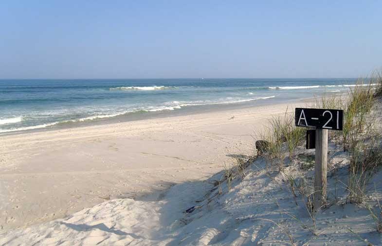 Island Beach State Park New Jersey