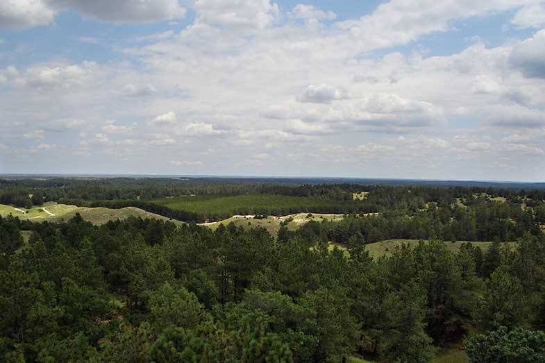Bessey Nebraska National Forest