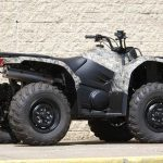 Yamaha Bear Tracker 250 Specs and Review