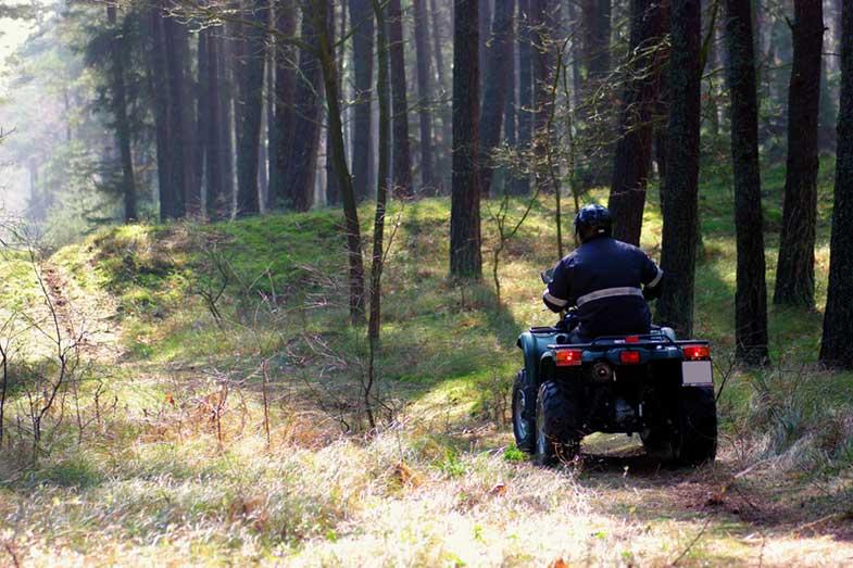 Person Driving Quad Bike ATV Through Forest
