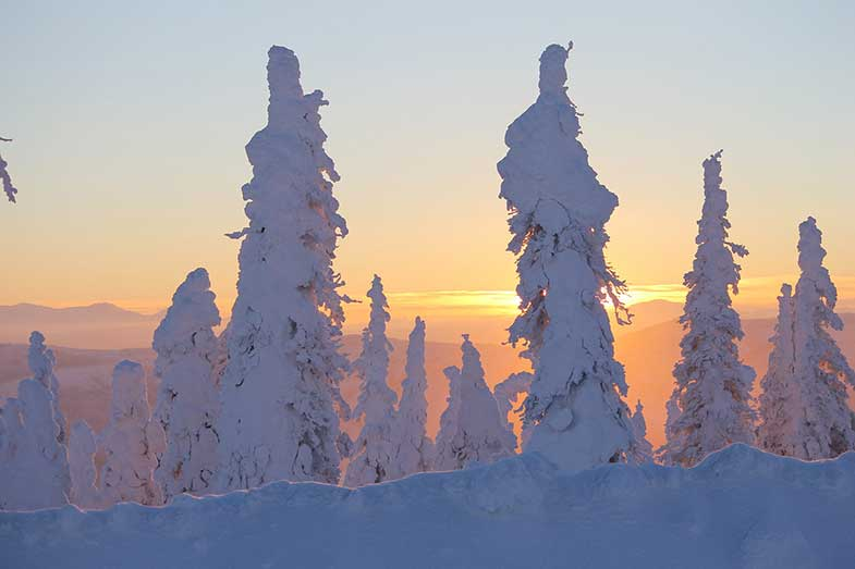 Sunset Dalton Highway Snow-Covered Trees