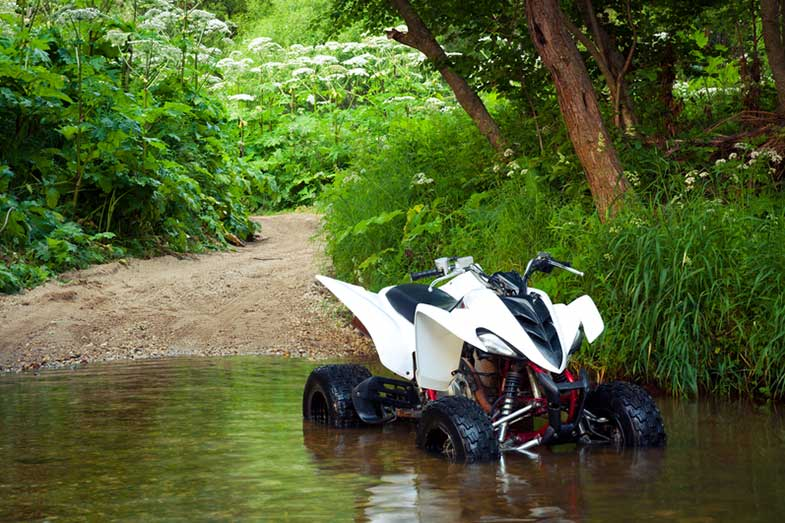 Yamaha Raptor 350 Parked in Water