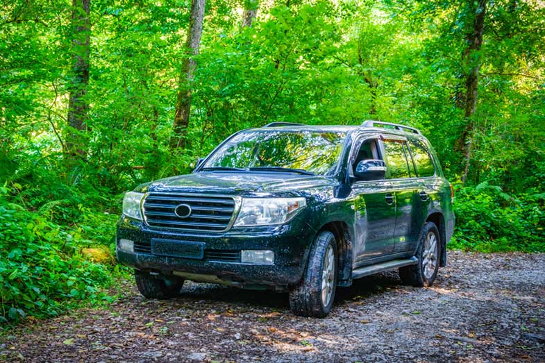 Off-Road Black SUV in the Forest