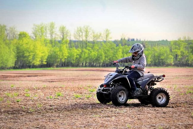 TaoTao 110cc ATV Specs and Review