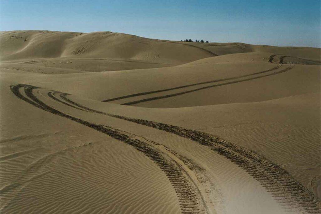 Sand Dune Buggy Tracks