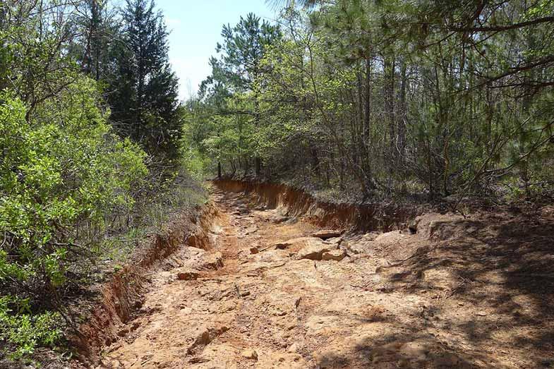 Barnwell Mountain Recreational Area, Glimer, Texas